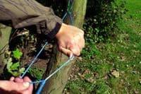 DD Hammocks Complete Whoopie Suspension System